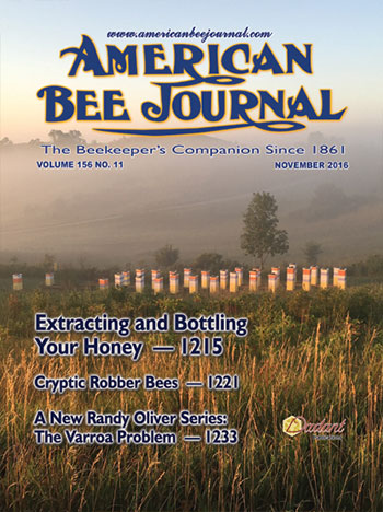 November American Bee Journal Cover Photo