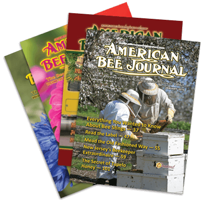 American Bee Journal Subscriptions