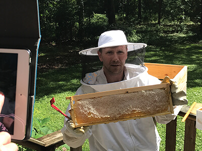Beekeeper with frame from behive
